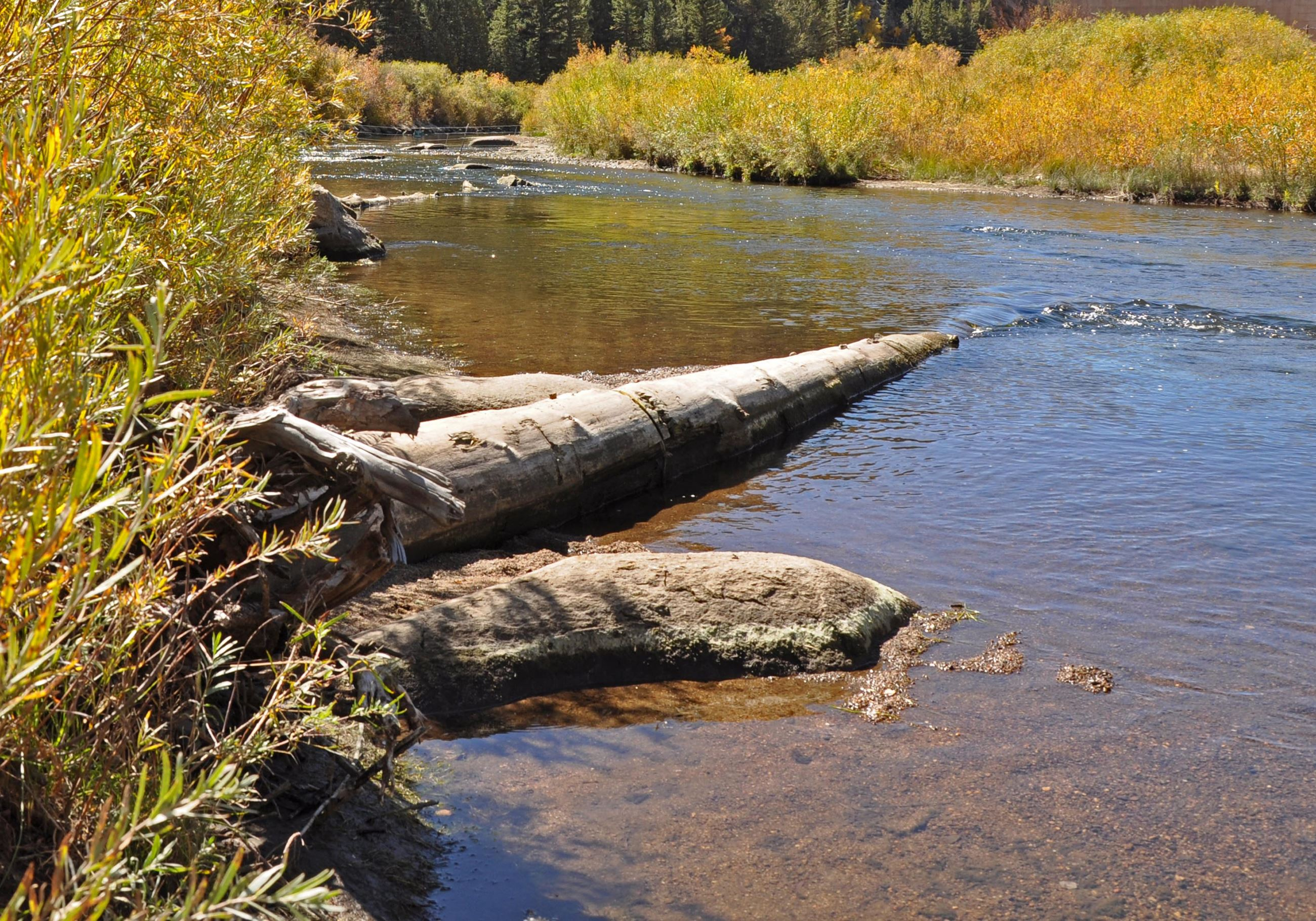 Elevenmile Canyon River Project